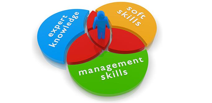 HR Skills Set